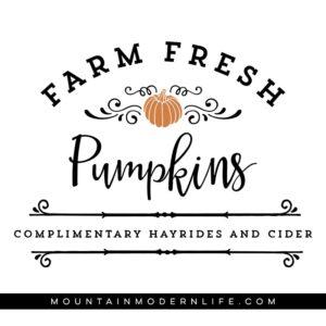 Farm Fresh Pumpkins SVG File