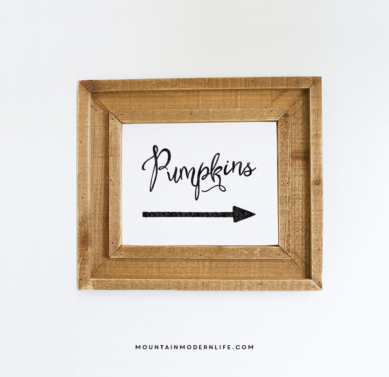 Instantly download this Fall Printable Pumpkins Sign to spruce up your home for the season!